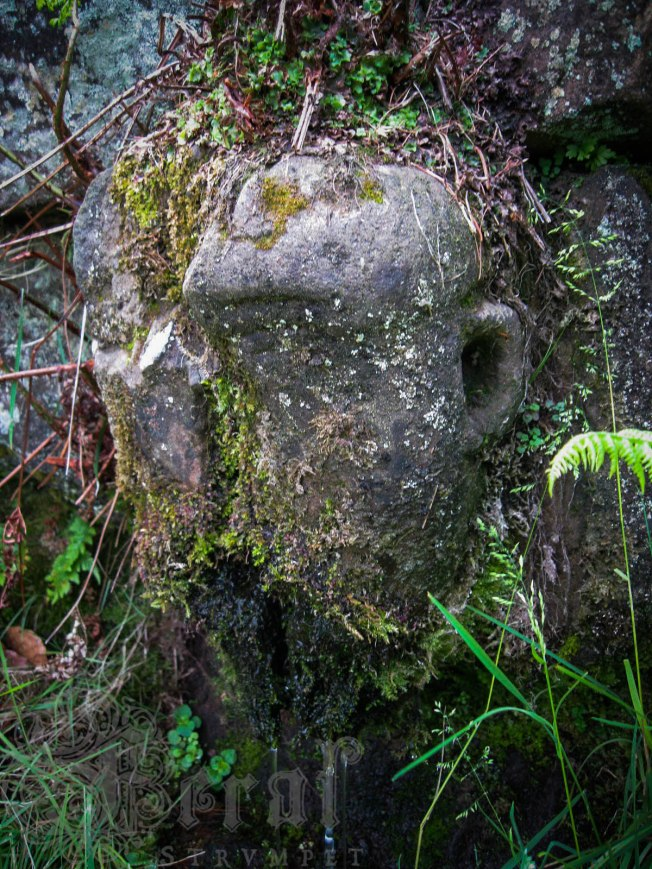 Slaverin' Sal, the gargoyle head on Diana's Well, East Witton.